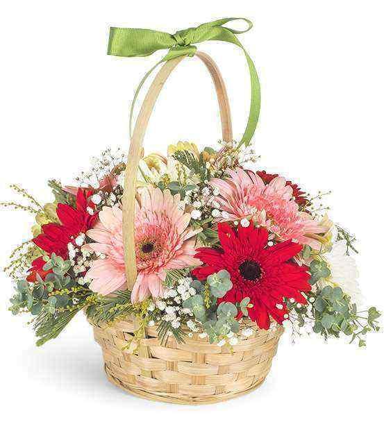 Sepette Mutluluk Çiçekleri