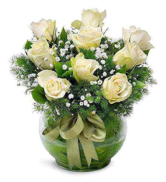 Fanusta Beyaz Güller